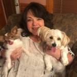 Phyllis Pelletier Profile Picture