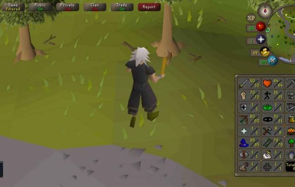 I've decided to really go for RuneScape