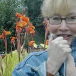 Anne Matthews Profile Picture