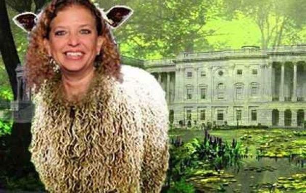 Buddy Walker's Swamp Creature Of The Week: Distortus shaggasheepus