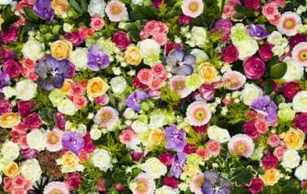 The complete guide to flower colours