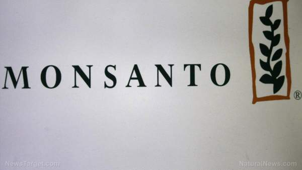 Monsanto slapped with $10M fine after using banned pesticide on Maui AFTER it was banned – NaturalNews.com