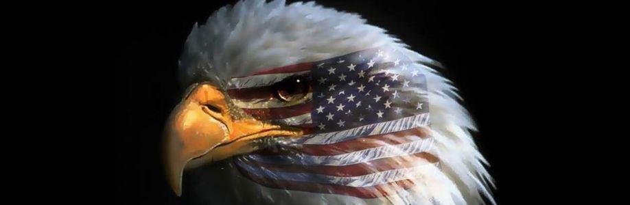 American Patriot Cover Image