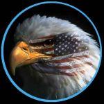American Patriot Profile Picture