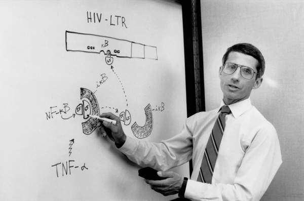 HIV & AIDS - Fauci's First Fraud