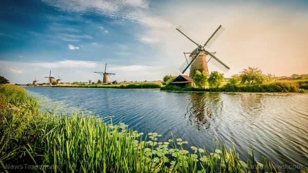 """Hague court declares Dutch coronavirus lockdowns """"illegitimate, far-reaching violation"""" – NaturalNews.com"""