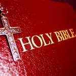 Daily Scripture Series Profile Picture