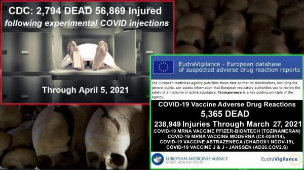 Mainstream Media Silence: CDC Reports 2,794 Deaths Following Experimental COVID Injections - Europe Nearly Double That Plus Almost A Quarter Million Injuries - The Washington Standard