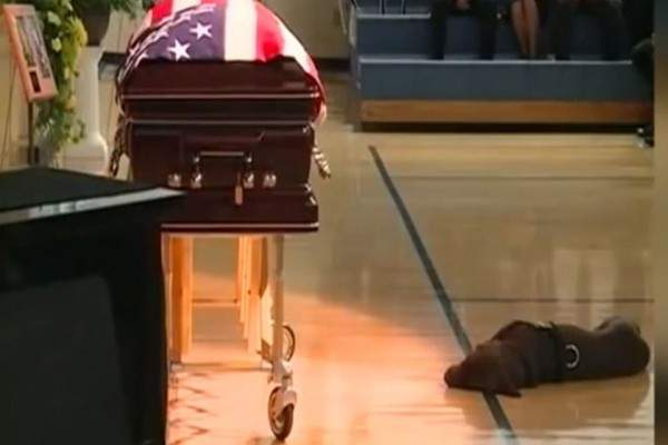 Loyal Dog Refuses To Leave His Fallen Navy SEAL Owner's Side... Heartbreaking Video