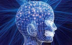 Hint at our Future Evolution – Our Brains have capacity, that we are not using | nwspiritism