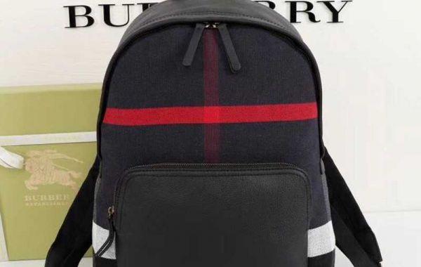 Tips on how to Buy Journey Backpacks for girls
