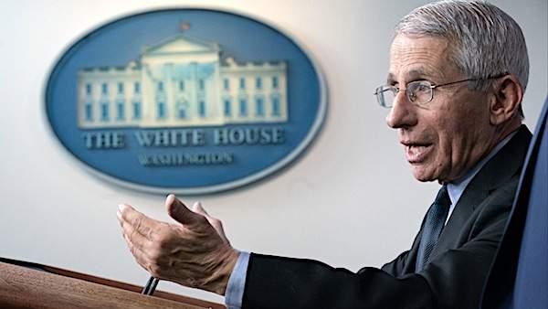 Biden keeps faith in Fauci, despite email revelations
