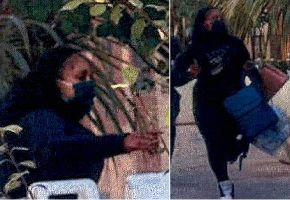Palo Alto: $100,000 worth of handbags stolen from Louis Vuitton