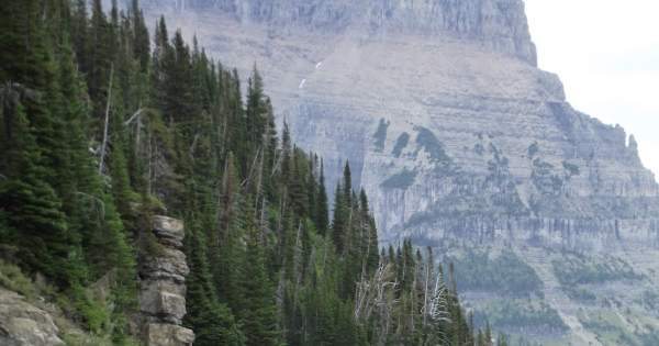 The Huckleberry Hiker: Glacier's Iconic Going-to-the-Sun Road Opens