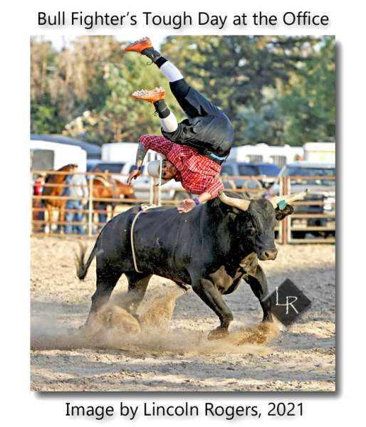 Bull Fighter Gains a New Perspective… | Lincoln's Thinkin's