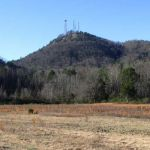 Currahee Mountain News Profile Picture