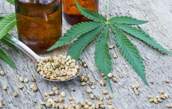 The 45-Second Trick For Will Cbd Show Up On A Drug Test? - Plain Jane Blog