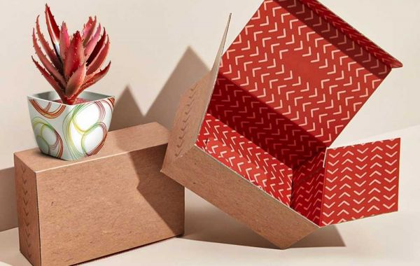 How can Presentation Boxes help Protect your Expensive Products from Damage?