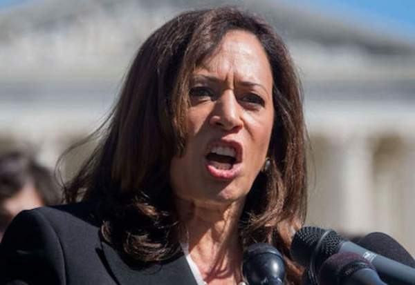Border Czar Kamala Harris Demands An Investigation Into What's Going On At The Border – Def-Con News