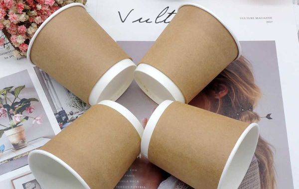 Disposable paper cup or disposable plastic cup - which one is safer